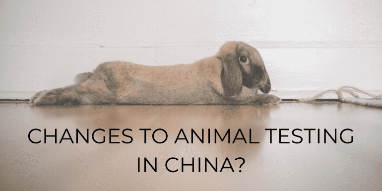 changes to animal testing in China
